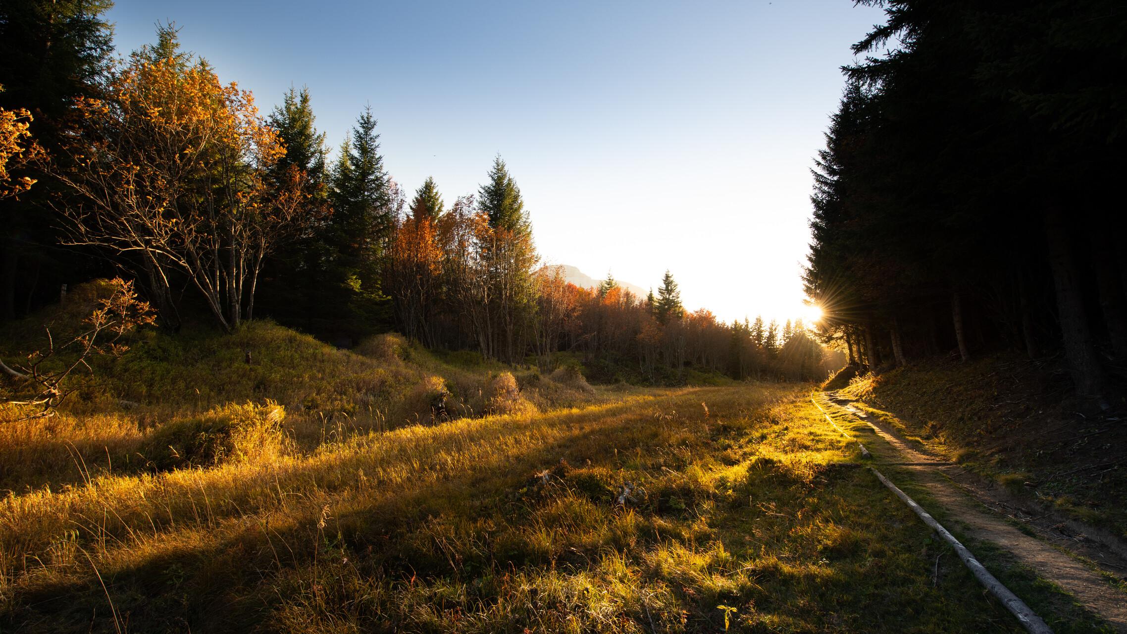 Herbst, die Jahreszeit der Tausend Farben !