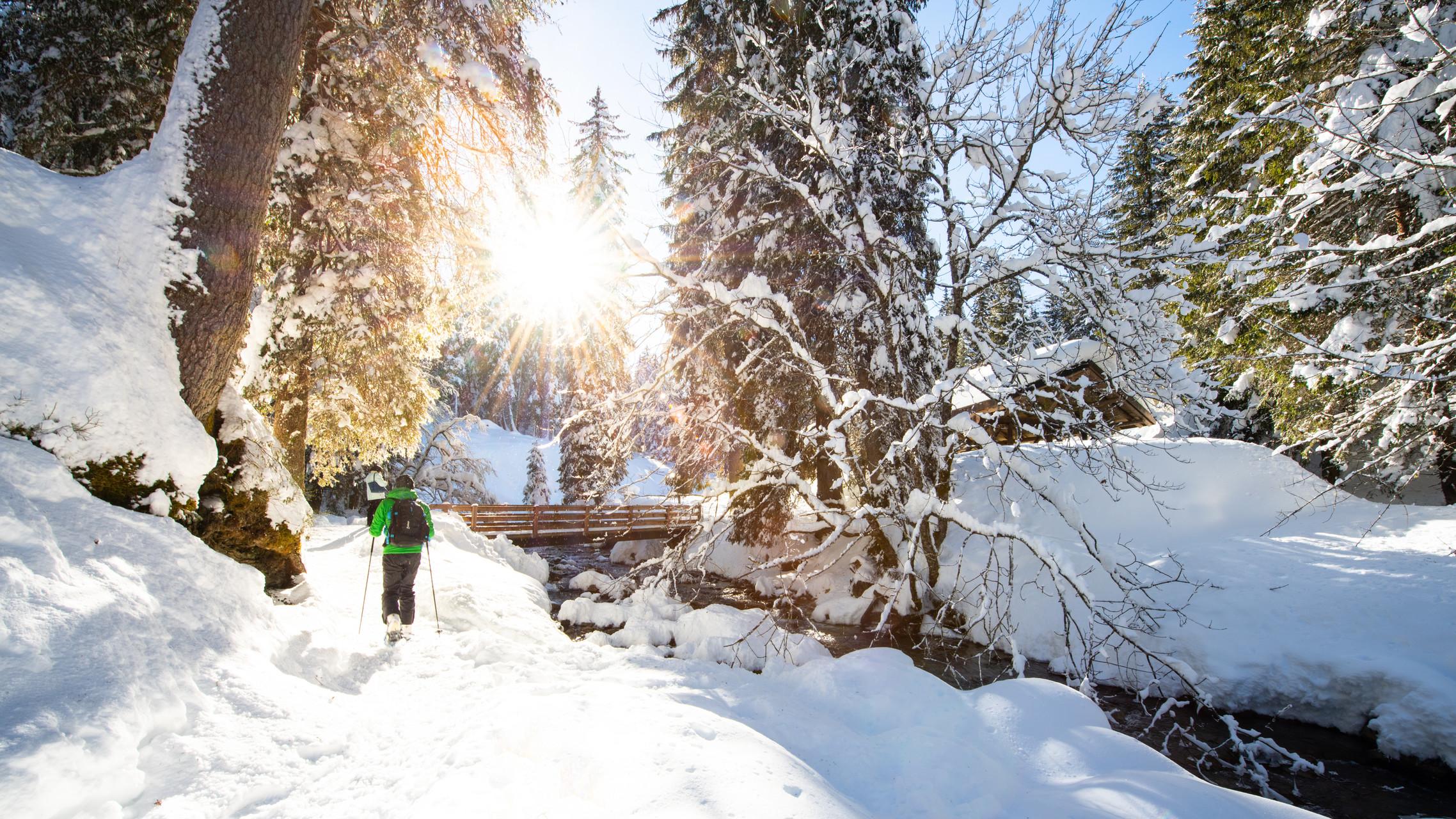 Streifen Sie auf Schneeschuhen der Vièze entlang durch den verschneiten Tannenwald des Vallon de They.